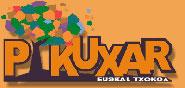 logo_pikuxar